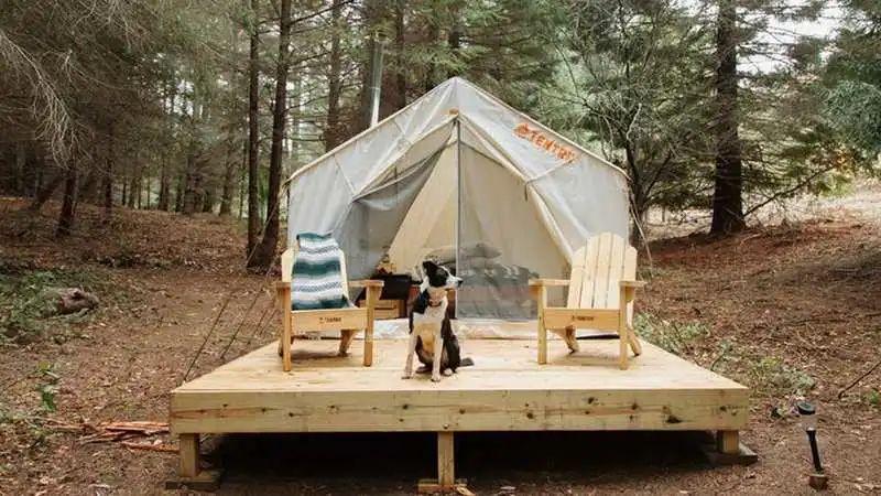 估值3亿美元的露营版Airbnb,HipCamp的竞争对手里有英国影帝| 创业熊