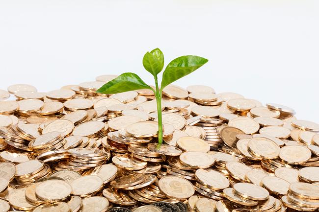 韩牧专栏 : 投资就是投机?体育创业在洗牌,体育投资也在洗牌
