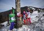 国际高山定点滑雪公开赛揭幕,竞速与趣味结合、团队参赛形式值得关注